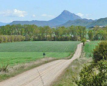 Trail 11: Puente la Reina – Martes scrubland