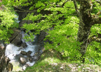 Ruta /Trail 1- Zuriza – río Veral