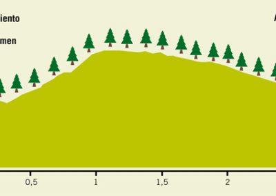 Ruta 4 Selva de Oza
