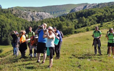 APLAZADA la Excursión ornitológica por el Mirador de Sigüés