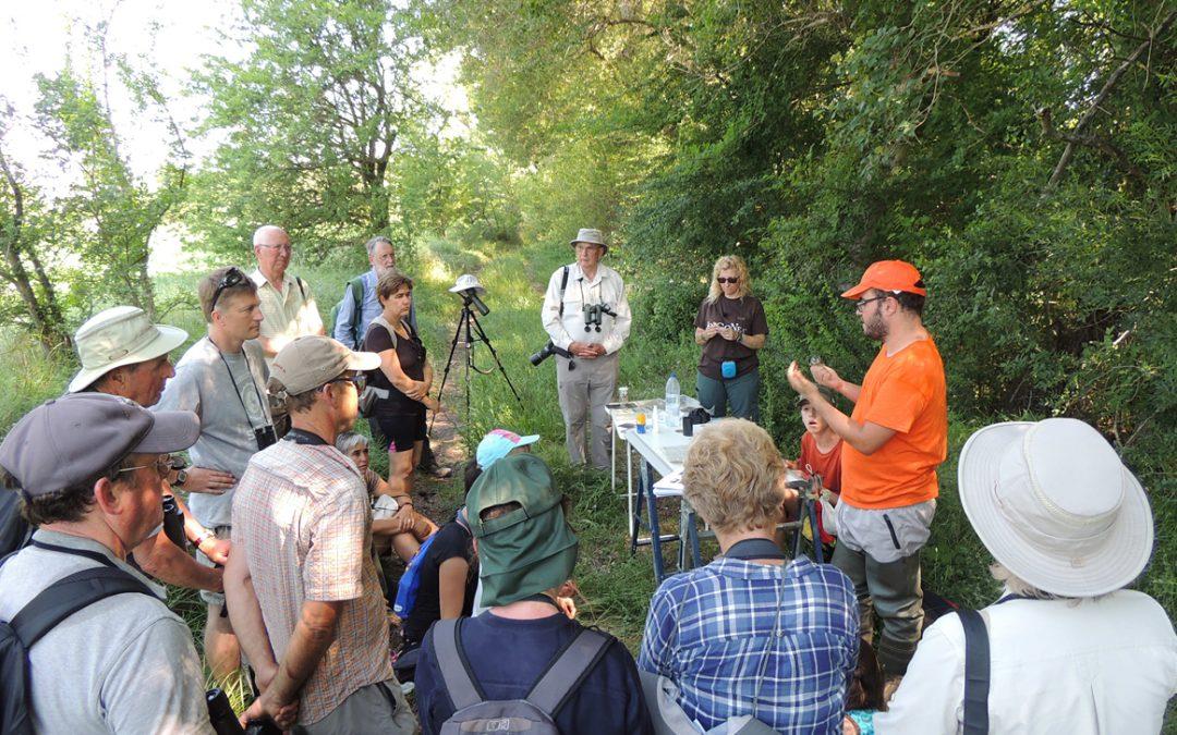 Excursión ornitológica y de interpretación por Somport