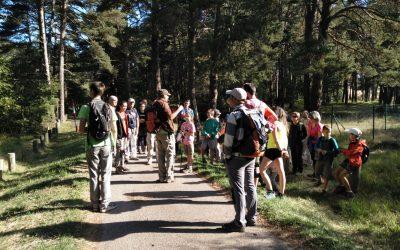 Excursión ornitológica y de interpretación de paisaje al Mirador Río Aragón-Artieda