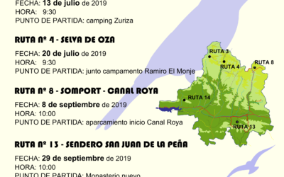 Excursiones Ornitológicas 2019