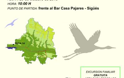 SUSPENDIDA Excursión ornitológica por el Mirador de Sigüés