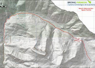 Ruta/Trail 5 Selva de Oza - Aguas Tuertas